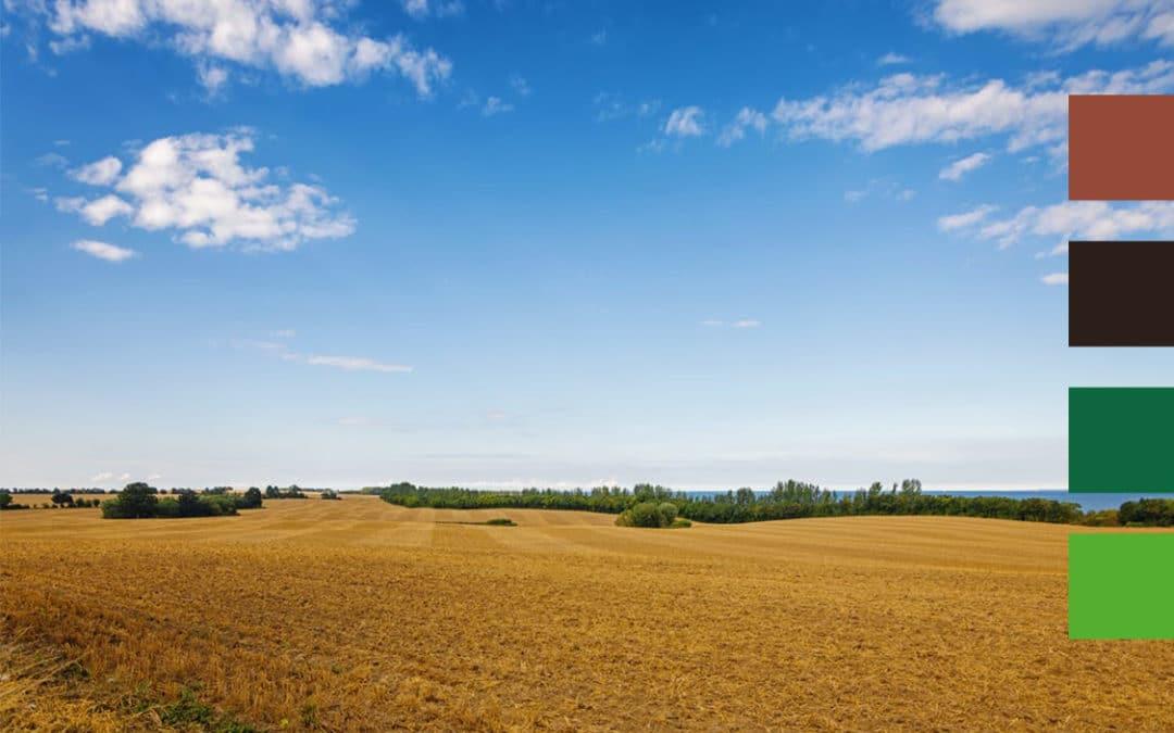 Novalis Terra, l'INRA et l'APAD testent ensemble la gestion de l'enherbement en Agriculture de Conservation des Sols